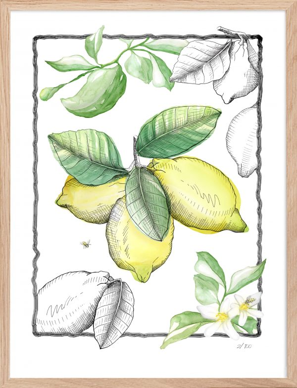 Lamina yellow parfume Atelierwall